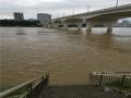 图为河水持续上涨,已经漫过亲水平台。(图/陈丽婕)
