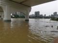 图为市民在桥底冒险游泳。(图/陈丽婕)