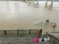 图为市民在江边冒险游泳。(图/陈丽婕)