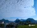 中国天气网广西站讯 今晨,巴马蓝蓝天空上覆盖着大量整齐排列的透光层积云,画面蔚为壮观 。(图文/叶小丽)
