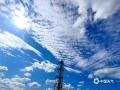 """中国天气网广西站讯 10月21日,河池金城江区东江镇和大任工业园区上空出现大面积""""鱼鳞云"""",白白的云朵在蓝天的映衬下,蔚为壮观。(图/杨永杰  文/欧春苗)"""