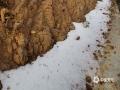 中国天气网广西站讯 自1月7日起,受强冷空气持续影响,梧州市苍梧县出现低温阴雨天气,11日凌晨大部最低气温为1~4℃,苍梧各地纷纷出现了雨夹雪。图为苍梧县狮寨镇木踏村降雨夹雪。(文/苏少青 图/孙小龙)