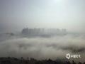 中国天气网广西站讯 1月22日,整个北海被大雾笼罩,整个城市显得灰雾蒙蒙。路上大小车辆蠕动爬行,海上渔船若隐若现,刚刚露出的太阳又被大雾蒙盖,此次大雾给人们的生活和出行带来不便。(文/彭定宇 图/韦凯)
