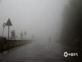 中国天气网广西站讯 受冷空气影响,今天(25日),凌云县遭遇大雾天气,大部地区能见度普遍低于200米,在G357国道凌云县城至泗城镇后龙村三台坡一带能见度不足50米,提醒广大司机朋友在行车过程中记得打开双闪警示灯,降低车速行驶,确保安全出行。(图文/杨少秋)