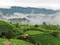 三江:雾绕侗乡赛仙境