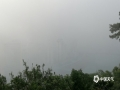 """中国天气网广西站讯 今天(30日)清晨,广西梧州笼罩在一片大雾中。这是由于夜间气温较低,地表辐射冷却作用使地面气层水汽凝结,而形成了辐射雾。辐射雾正是民谚所说的""""十雾九晴""""中的雾,预示着今天将是一个艳阳天。根据梧州市气象台预报,预计今天白天,梧州市多云间晴,最高气温将达29~30℃,外出请注意补水防晒。(文/邓碧娜 图/梁妙芝)"""