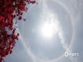 图为4月30日桂林上空拍摄到的日晕美景。(图/张雅昕)
