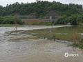 中国天气网广西站讯 5月11日晚起至12日早上,广西北部的桂林、柳州、河池出现强降雨天气,部分地区降下大到暴雨乃至大暴雨,局地特大暴雨!柳州市融安县长安镇12小时雨量达到258.7毫米!强降雨导致部分地区积水严重、交通出行受阻,树木倒伏、农作物受损,有的地区甚至出现山体塌方,导致道路中断。图为罗城天河拉成屯过路桥被淹。(图/蒙秀腾 文/卿跃文 何正令 秦晓翠 蒋熙)
