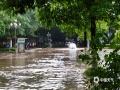 中国天气网广西站讯 5月11日晚起至12日早上,广西北部的桂林、柳州、河池出现强降雨天气,部分地区降下大到暴雨乃至大暴雨,局地特大暴雨!柳州市融安县长安镇12小时雨量达到258.7毫米!强降雨导致部分地区积水严重、交通出行受阻,树木倒伏、农作物受损,有的地区甚至出现山体塌方,导致道路中断。图为融安县政务大楼门前积水,车辆涉水通行。(图/陈一新 文/卿跃文 何正令 秦晓翠 蒋熙)