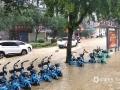 中国天气网广西站讯 5月11日晚起至12日早上,广西北部的桂林、柳州、河池出现强降雨天气,部分地区降下大到暴雨乃至大暴雨,局地特大暴雨!柳州市融安县长安镇12小时雨量达到258.7毫米!强降雨导致部分地区积水严重、交通出行受阻,树木倒伏、农作物受损,有的地区甚至出现山体塌方,导致道路中断。图为永福暴雨致共享单车全部停运。(图/廖文琼 文/卿跃文 何正令 秦晓翠 蒋熙)