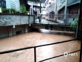 """中国天气网广西站讯 昨天(12日)夜间到今天白天,广西部分地区出现大到暴雨,局部大暴雨,并伴有雷暴、大风等强对流天气。强降雨造成河水上涨,城市内涝等次生灾害。图为资源县大木江河道暴涨,县城变成""""威尼斯小镇""""(图/谭琼)"""
