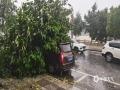 中国天气网广西站讯 6月3日傍晚,桂林遭雷电、大风等强对流天气袭击,平乐电闪雷鸣,闪电划破天空,灵川极大风速达到9级,路边的树木被大风刮倒砸伤车辆。图为全州大风将路边的大树吹倒,砸到路边的车辆。(图/蒋奇峰)