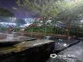 中国天气网广西站讯 6月3日傍晚,桂林遭雷电、大风等强对流天气袭击,平乐电闪雷鸣,闪电划破天空,灵川极大风速达到9级,路边的树木被大风刮倒砸伤车辆。图为灵川大树被大风吹倒。(图/宋琼)