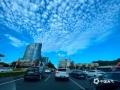 中国天气网广西站讯 昨天南宁晴空万里,朵朵白云铺满蓝天,煞是好看!(摄影/刘英轶)