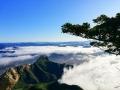 中国天气网讯 随着夜间温度降低,湿度增大。近两天早晨,河北承德围场县出现云海景观。大面积的云雾将县城及周边山峰笼罩,高处望去漫无边际,景色蔚为壮观。图片拍摄于围场锥子山。(图/李彦超 宋春来)