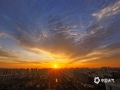 9月11日一早,河北廊坊三河市的朝霞迅速刷爆了当地朋友圈。图片中可以看到,清晨中不断升高的太阳将当地天空染成红色,搭配蓝天白云景色十分壮观。拍摄于廊坊三河燕郊开发区。(图/李辉)