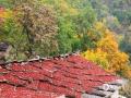 秋季的太行山,除了层林尽染,绵延无尽的斑斓美景,还有山里乡亲们收秋晒秋的忙碌身影。太行山盛产山柿子、山楂,每到深秋时节,晾晒山果,已经成为山里人延续多年的传统和习俗。图为河南辉县,屋顶晾晒着的山楂。