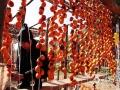 秋季的太行山,除了层林尽染,绵延无尽的斑斓美景,还有山里乡亲们收秋晒秋的忙碌身影。太行山盛产山柿子、山楂,每到深秋时节,晾晒山果,已经成为山里人延续多年的传统和习俗。图为河北涉县,村民晾晒金灿灿的柿子。