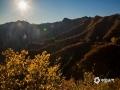 中国天气网讯 秋末冬初,河北承德兴隆山区的景色也到达了一年中最美的时候。满山或红、或黄的树叶,搭配着初冬的暖阳,显得那么的层次丰富,给人以视觉上美的享受。(图/李辉)