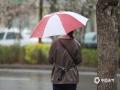 受寒潮天气影响,今天(26日)早晨开始,河北石家庄普降小雨。与此同时,市区及周边地区还伴有4级左右的西北风。由于降雨正值上班早高峰,湿滑的路面给交通出行带来的不小影响。并且今早石家庄的气温相比昨天同一时刻出现6℃左右的下降,湿冷的天气让不少市民又穿上了羽绒服、大衣等冬装来御寒。(图/冯慧明)