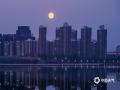"""中國天氣網訊 4月7日夜晚到8時凌晨,今年最大的""""超級月亮""""在我國天空如約而至。在河北廊坊、唐山兩地,一輪明月懸掛天空,十分的美輪美奐。當地攝影愛好者也是通過二次曝光的方法,用相機記錄下這一瞬間。圖為河北廊坊三河燕郊(圖/李輝)"""