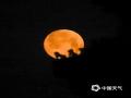 """4月7日夜晚到8時凌晨,今年最大的""""超級月亮""""在我國天空如約而至。在河北承德、唐山兩地,一輪明月懸掛天空,十分的美輪美奐。當地攝影愛好者也是通過二次曝光的方法,用相機記錄下這一瞬間。圖為河北唐山遵化(圖/劉滿倉)"""