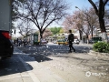 """隨著氣溫日漸升高,近幾天,河北廊坊三河燕郊城區的楊柳絮進入到飄飛盛期。尤其是每天中午氣溫較高的時候,城區的大街小巷隨處可見飄飛的如""""飛雪""""般的楊柳絮。而在飛絮集中的地區,已經給當地居民的出行帶來不小的影響。預計當地飛絮將會一直持續到5月上旬,公眾外出還是要做好防護。(圖/李輝)"""