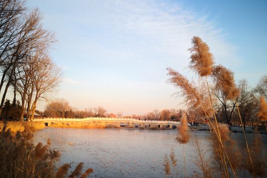 冬日夕阳下的圆明园