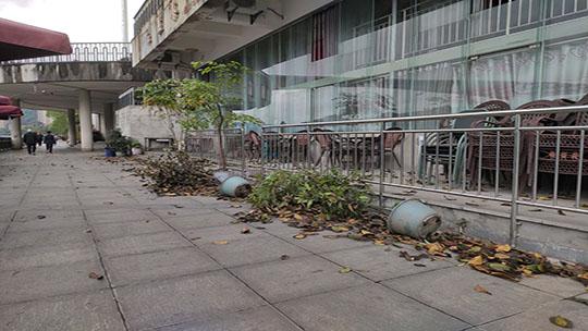 昨夜狂风大雨 四川宜宾多地受灾