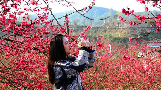 四川广安和春天的约会