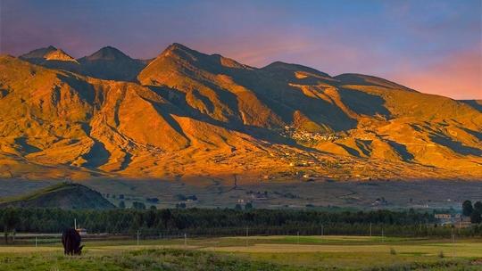 美丽的塔公草原