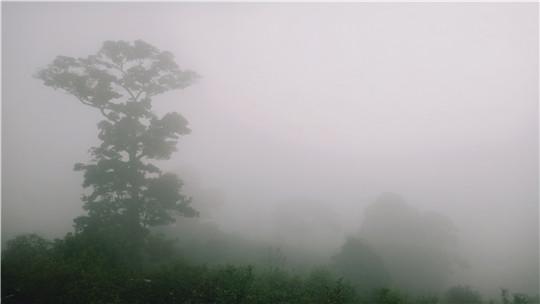 云南墨江今晨一片雾蒙蒙