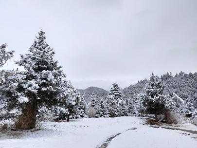 云南丽江、香格里拉迎来2020年第一场雪