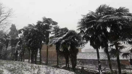 年伊始 弥勒、华坪雨、冰雹、雪齐报到