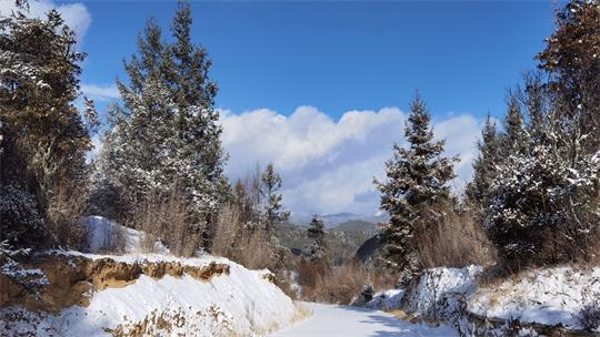 瑞雪兆丰年 香格里拉国家区域大气本底站雪景