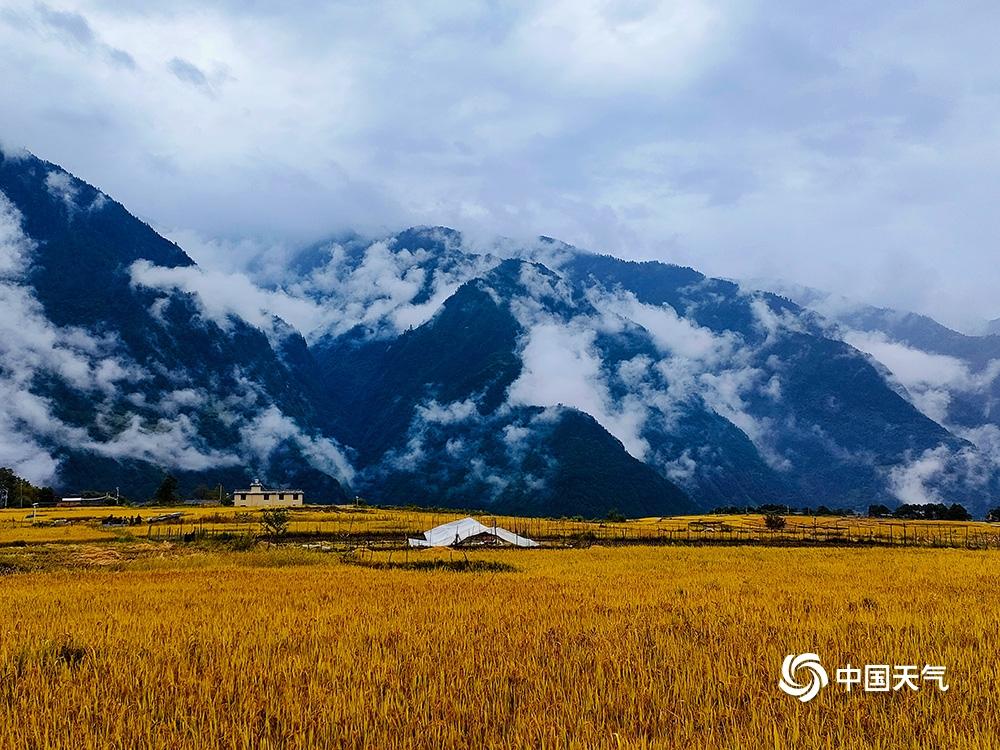 金秋十月,丙中洛呈现最美山水田园画